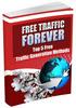 Thumbnail Free Traffic Forever plr