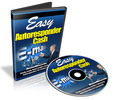 Thumbnail Easy Autoresponder Cash - Video Series plr
