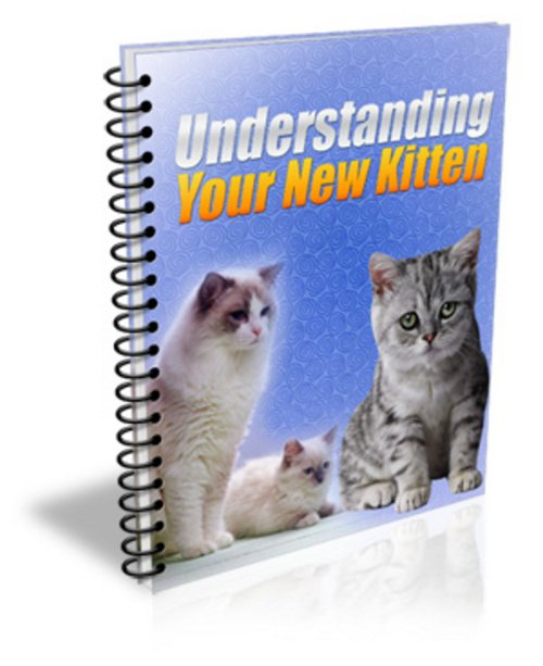 Product picture Understanding Your New Kitten (PLR)